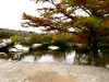 mckinney falls park nov 2012