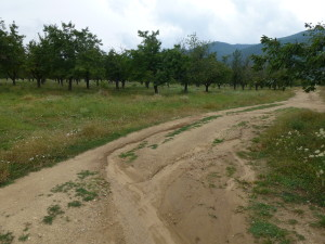 BikingDirtRoadOutsideKran 1 300x225 Biking in Bulgaria   part 1   Central Balkan Region