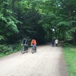 Bike-Path-Tiergarten